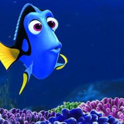dory_from_nemo_5_second_memory